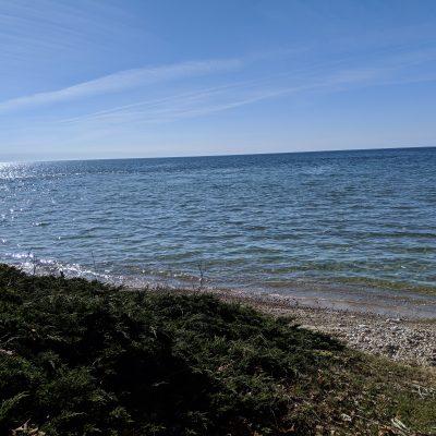 Higbee Beach House- The Maine Door